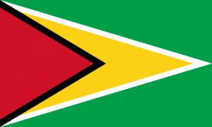Bandeira da Guiana.