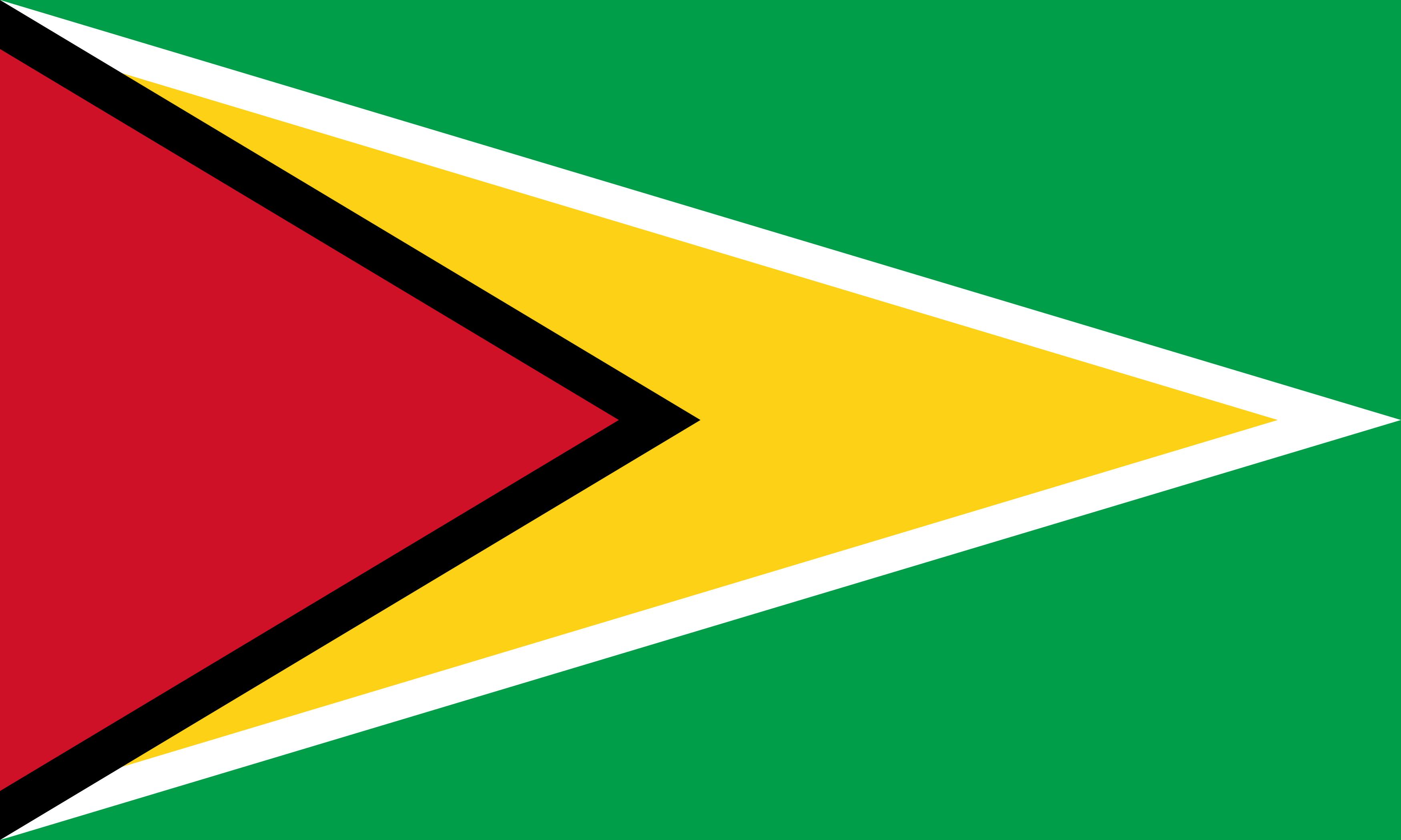 bandeira da guiana - Bandeira da Guiana