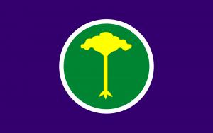 Bandeira de São Carlos SP.