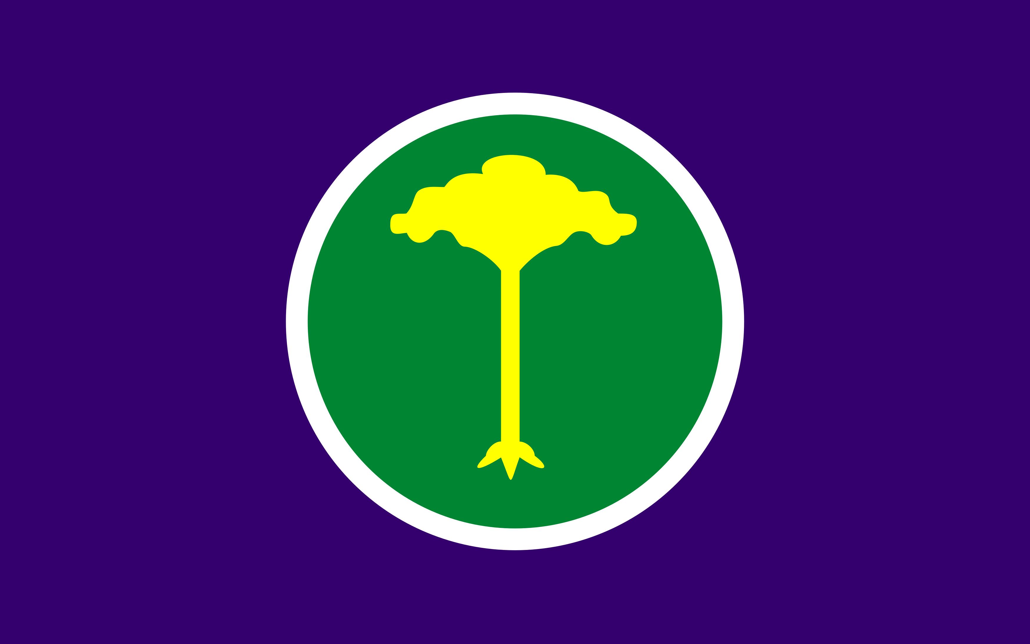 bandeira de sao carlos sp - Bandeira de São Carlos SP