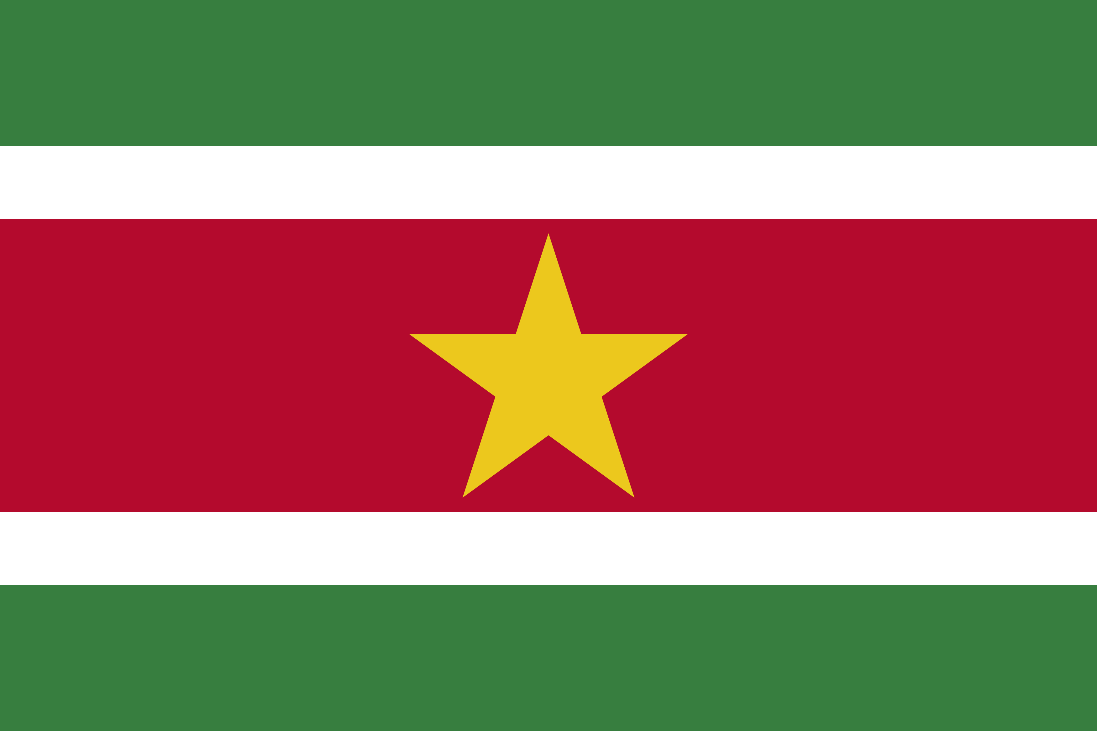 Bandeira do Suriname.